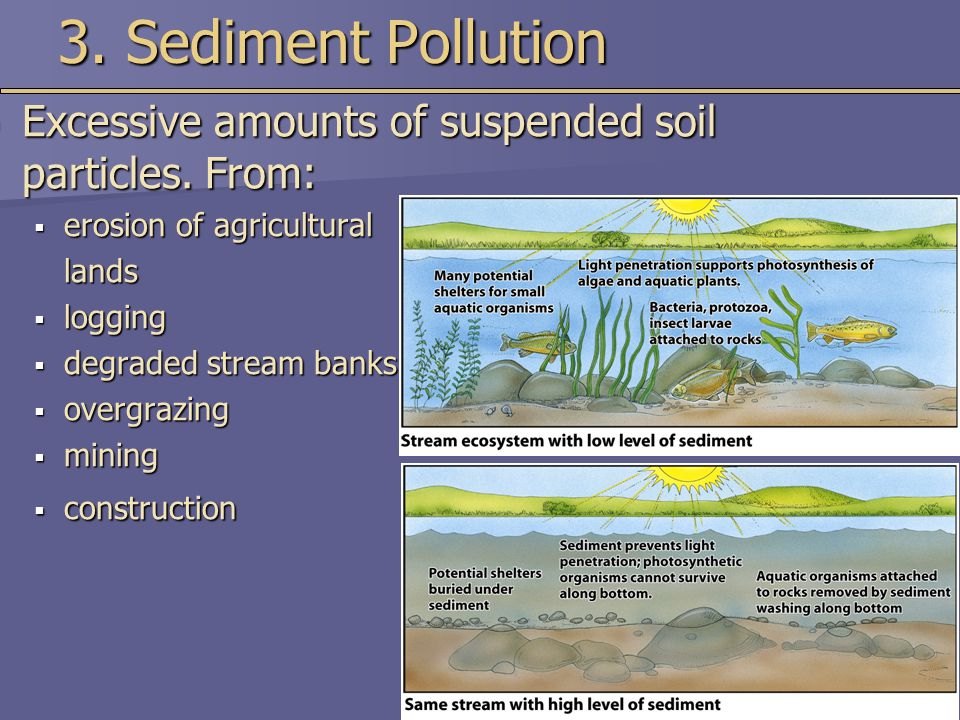 3. Sediment Pollution Excessive amounts of suspended soil particles. From: erosion of agricultural.