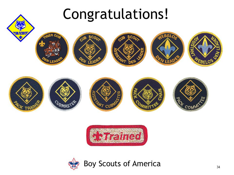 Congratulations! Boy Scouts of America Say (in your own words):