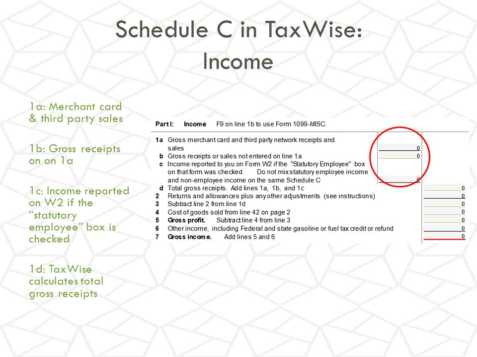 Schedule C in TaxWise: Income