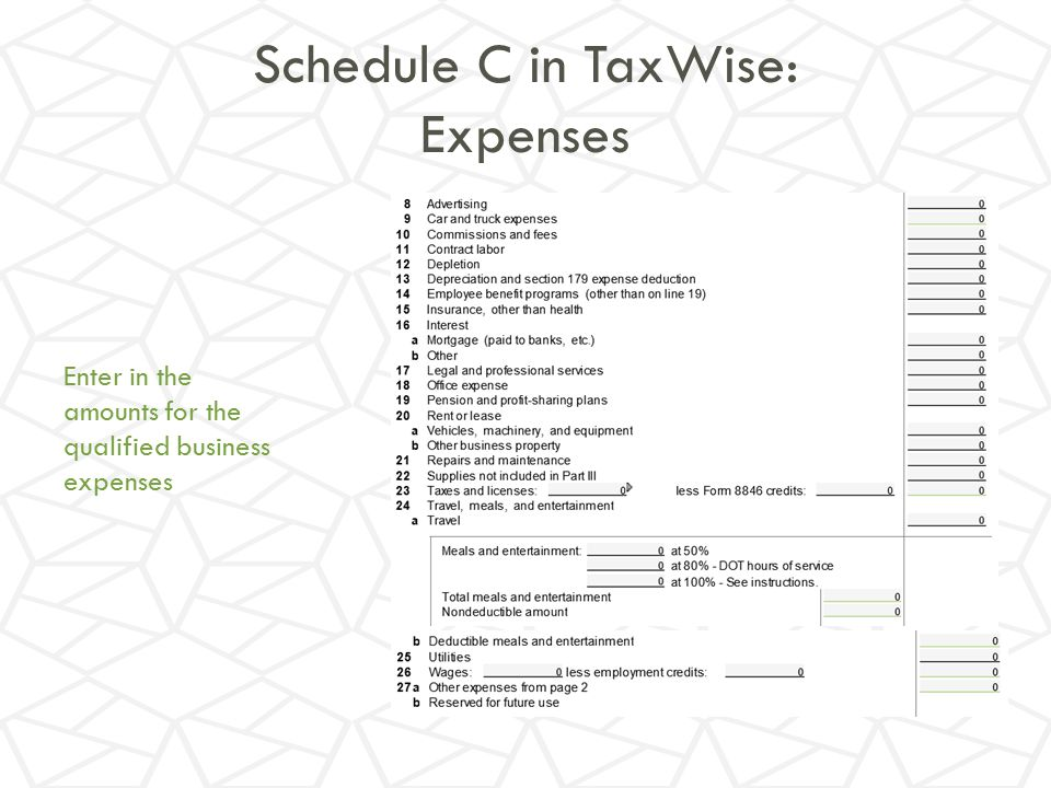 Schedule C in TaxWise: Expenses