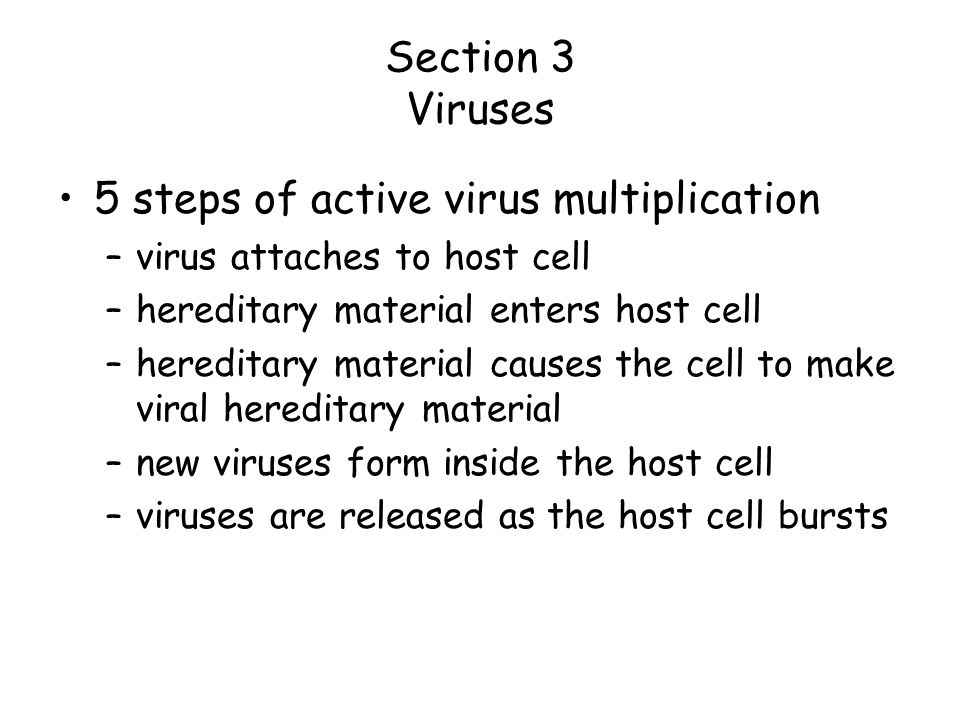 5 steps of active virus multiplication