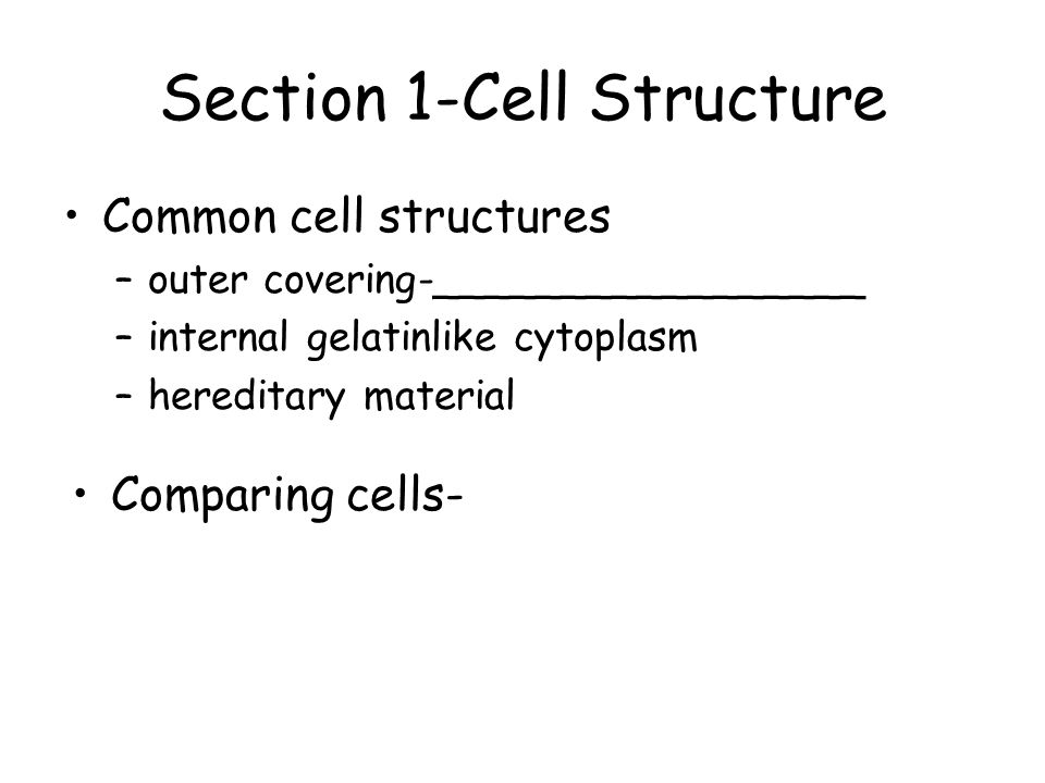 Section 1-Cell Structure