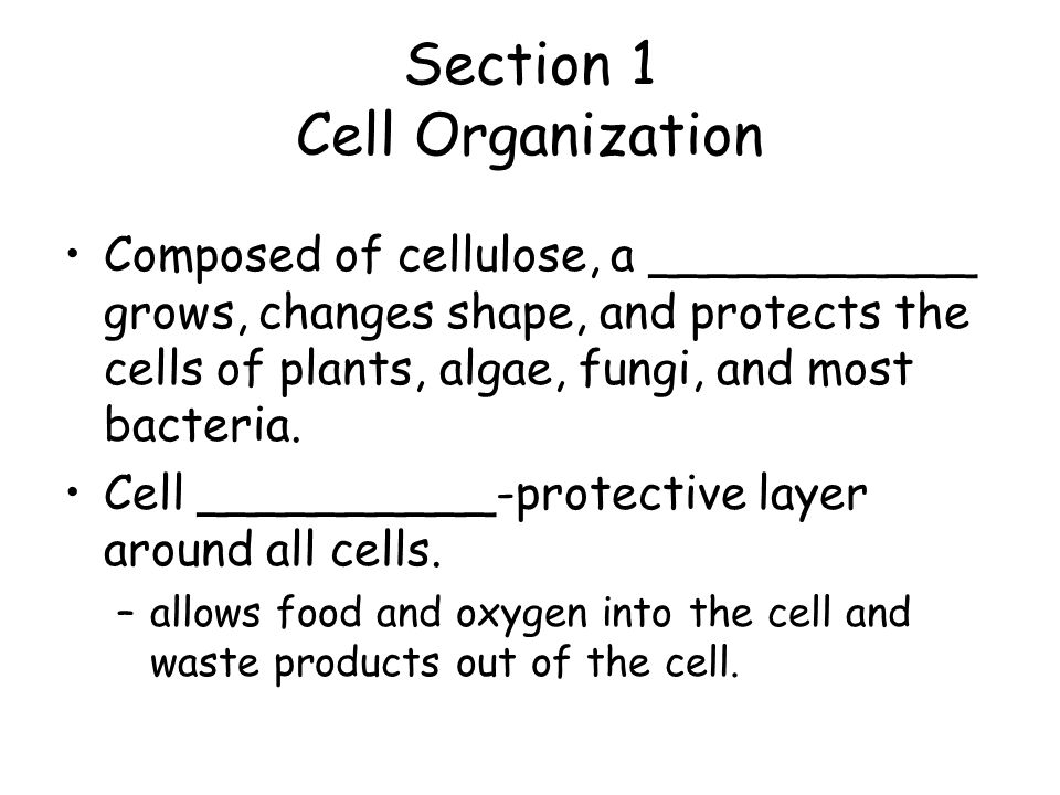 Section 1 Cell Organization