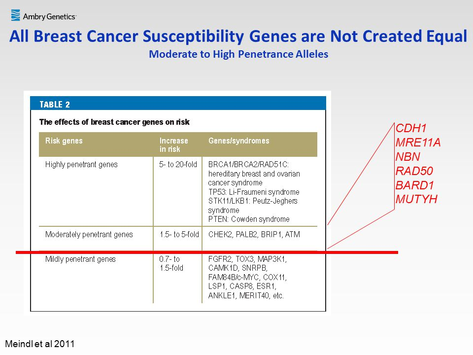 breast cancer susceptibility genes
