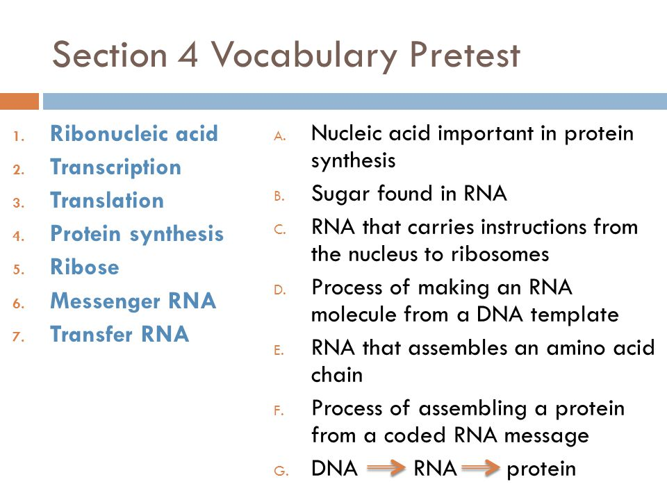 DNA, RNA, and Protein Synthesis - ppt video online download