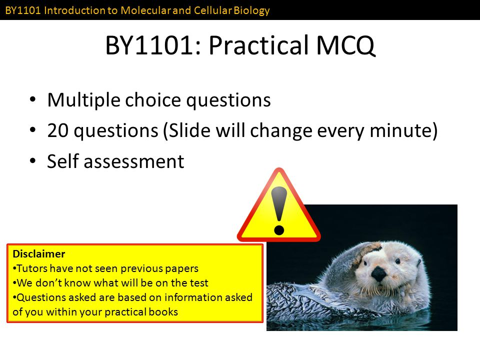 BY1101: Practical MCQ Multiple choice questions
