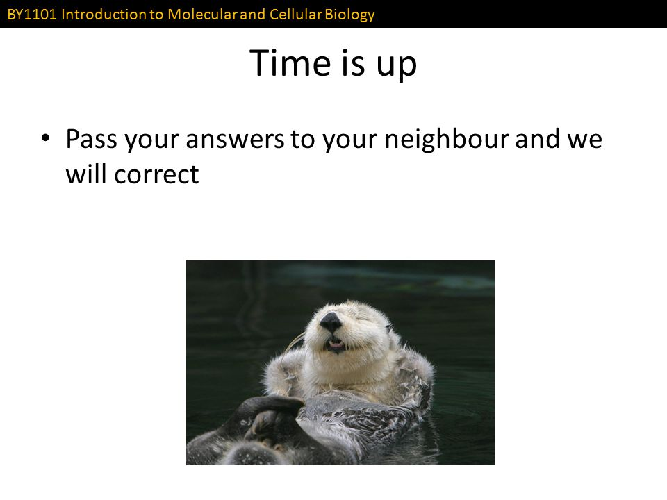 Time is up Pass your answers to your neighbour and we will correct
