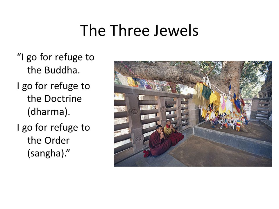 The Three Jewels I go for refuge to the Buddha.
