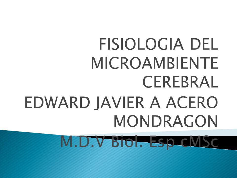 FISIOLOGIA DEL MICROAMBIENTE CEREBRAL