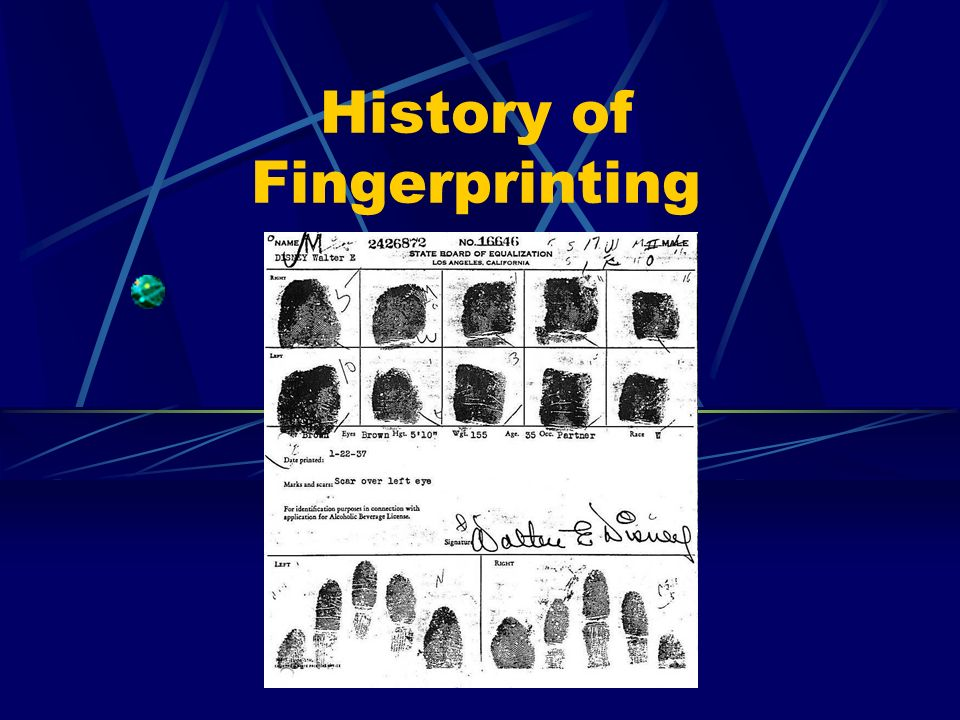 the history of fingerprint identification and features of fingerprints
