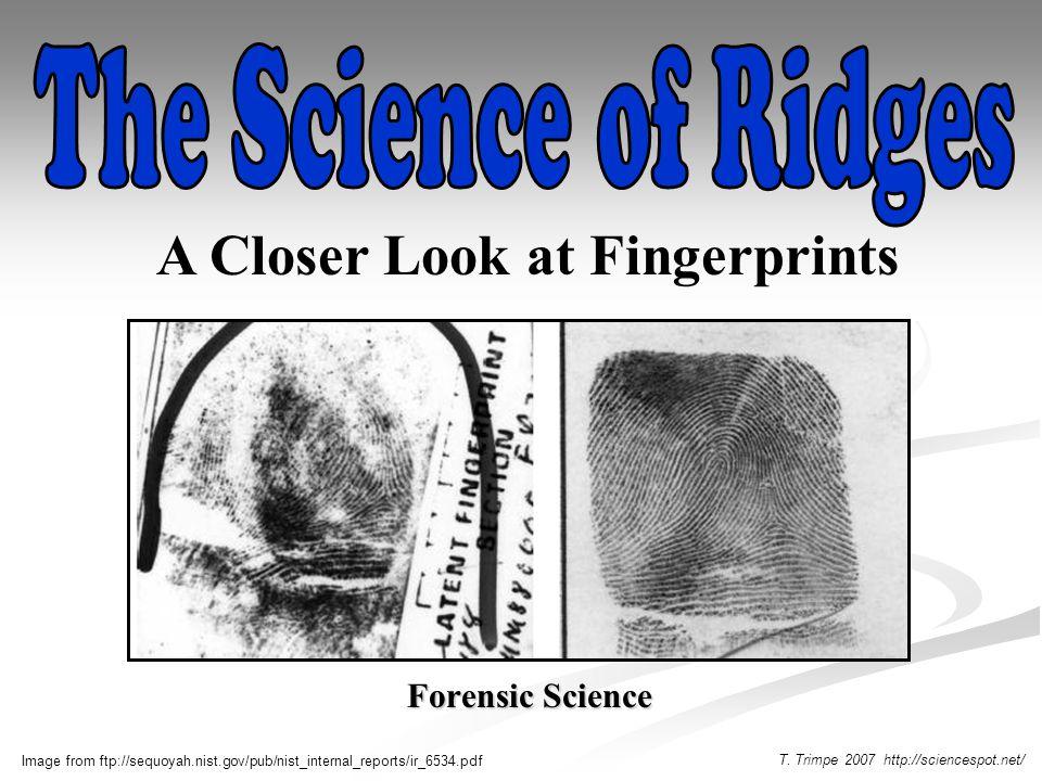 Fingerprints Coach Whitaker. - ppt video online download