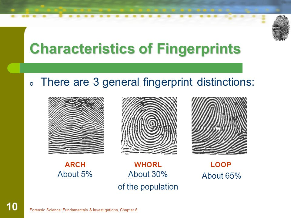 Chapter 6 Fingerprints By the end of this chapter you will ...