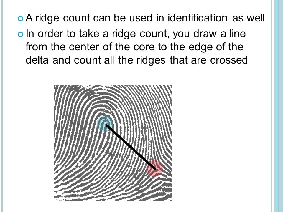 how to take fingerprints online