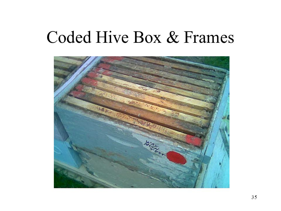 Coded Hive Box & Frames