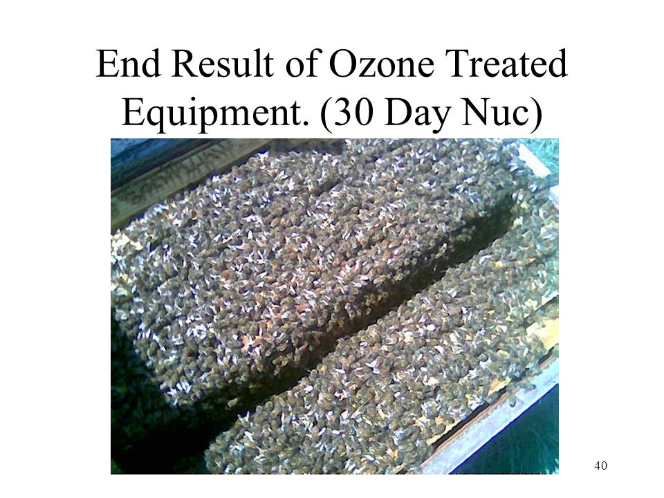 End Result of Ozone Treated Equipment. (30 Day Nuc)