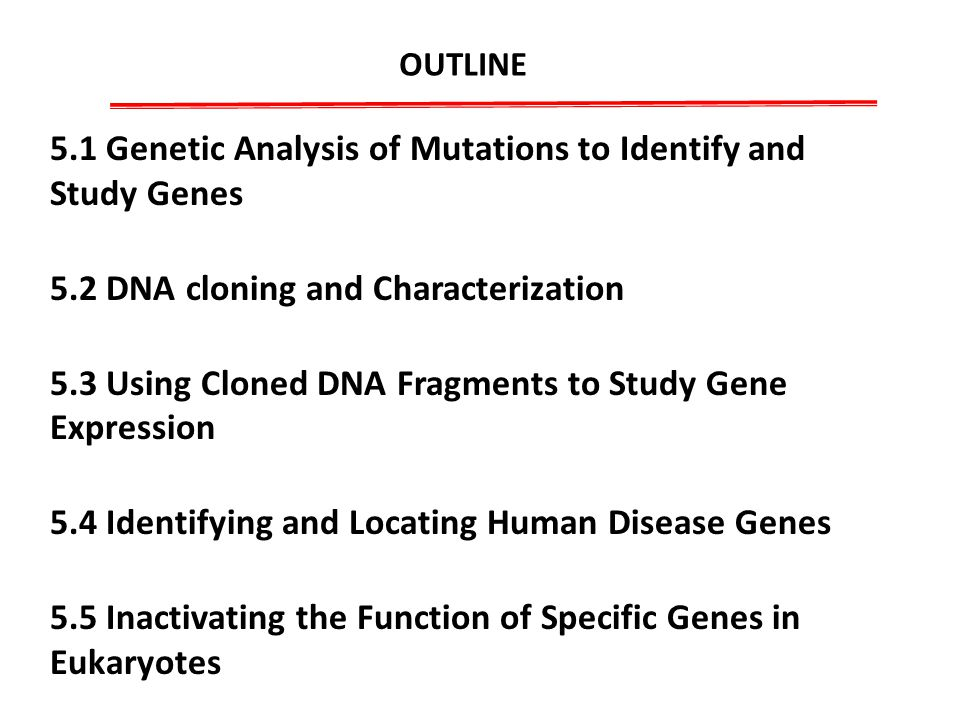 a research on human cloning and the manipulation of genes United nations educational, scientific and cultural organization  cloning,  specifically stating that genetic manipulation of human germinal cells includes  the.