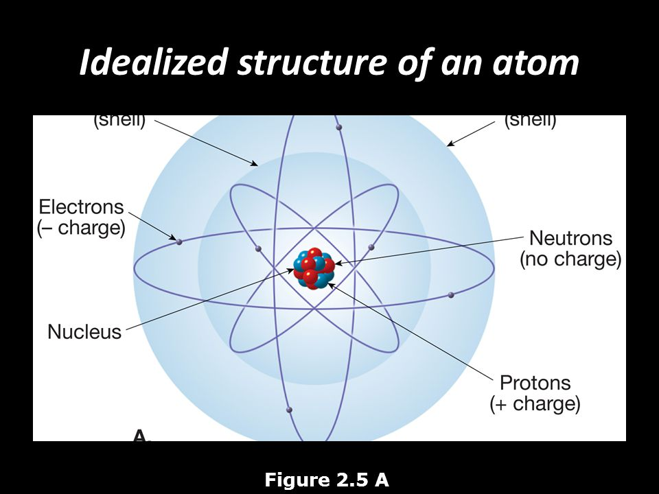 Idealized structure of an atom