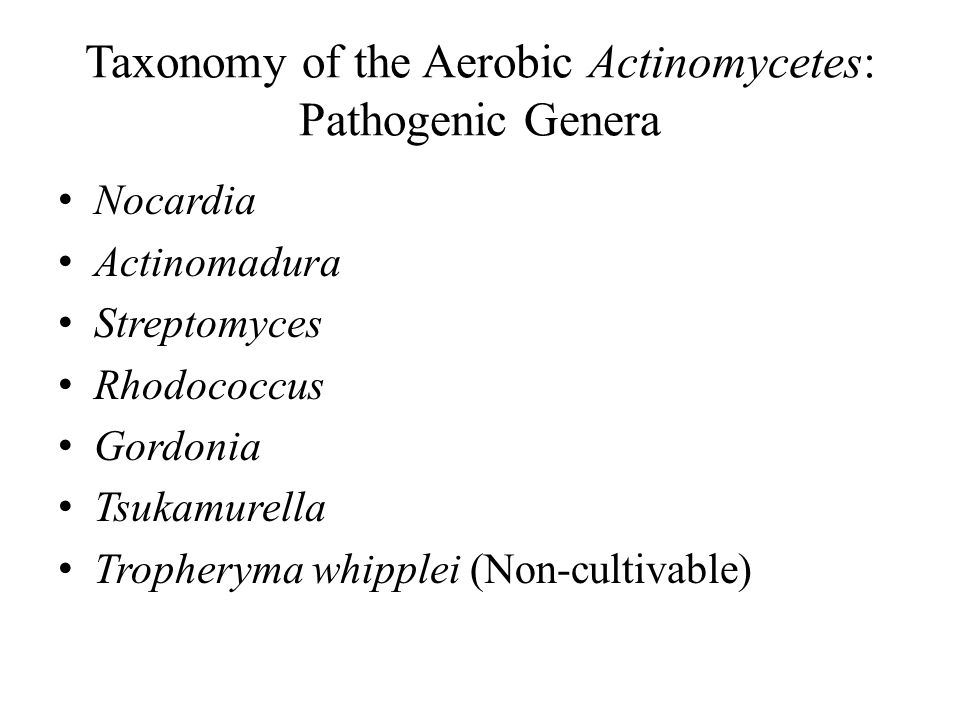 Taxonomy of the Aerobic Actinomycetes: Pathogenic Genera