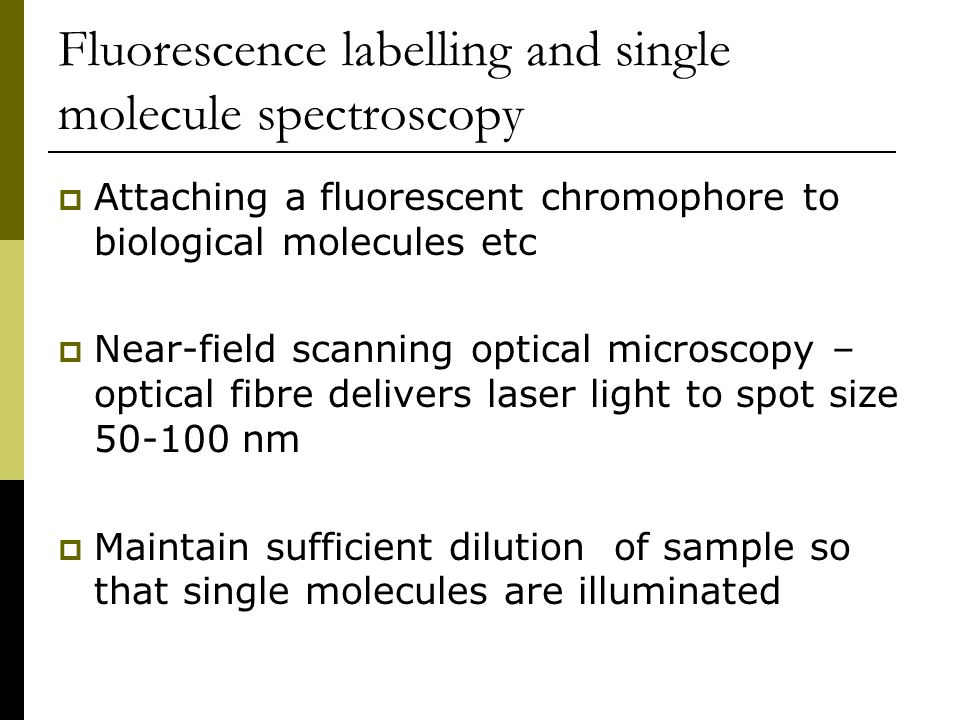 Fluorescence labelling and single molecule spectroscopy
