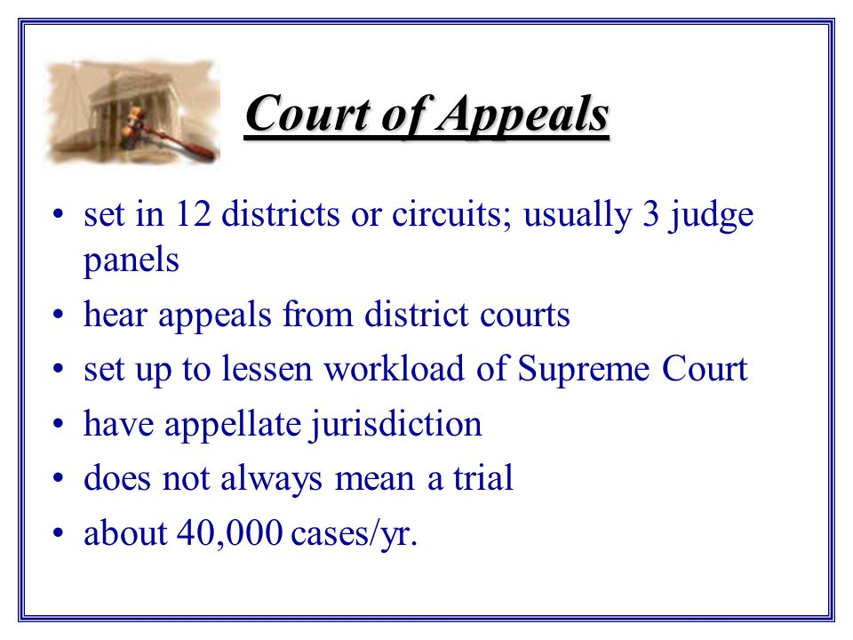 Court of Appeals set in 12 districts or circuits; usually 3 judge panels. hear appeals from district courts.