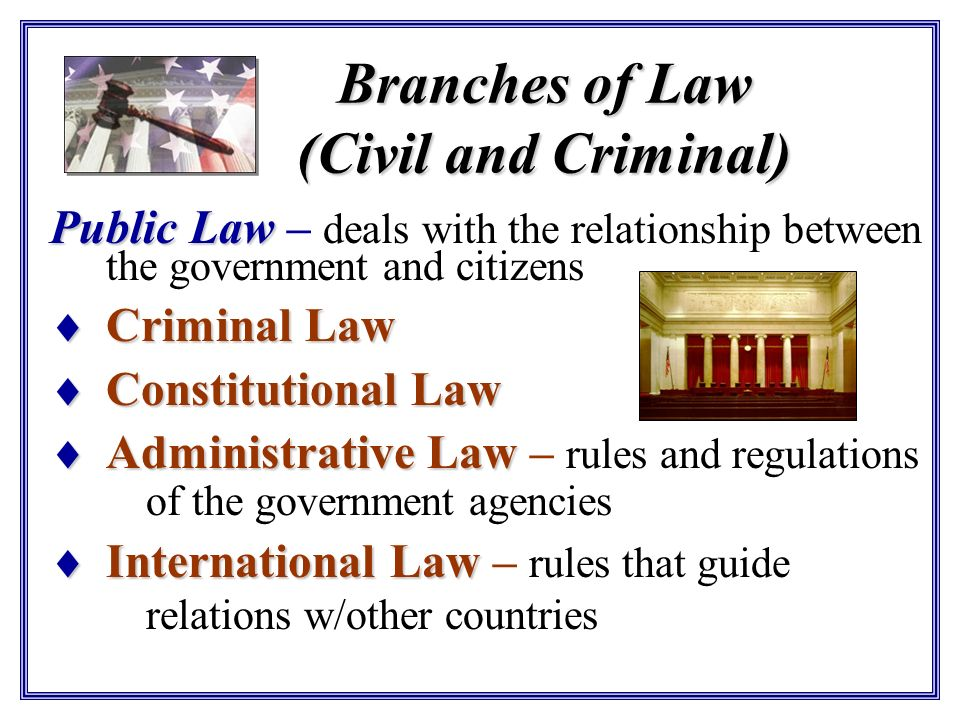 Branches of Law (Civil and Criminal)