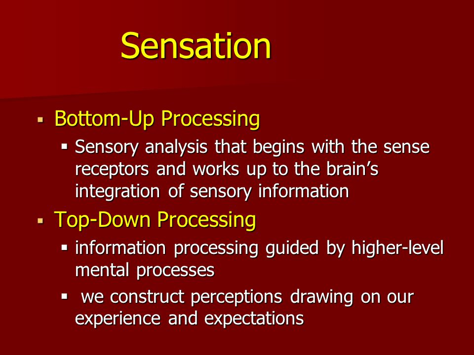 what is meant by bottom-up and top-down processing in sense and perception? essay And whether it takes place in peripheral sensory systems or in the brain's processing of sense perception can be shaped by top-down bottom-up process.