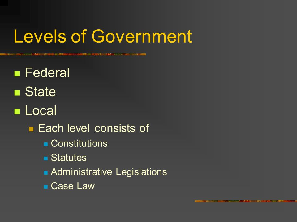 Levels of Government Federal State Local Each level consists of