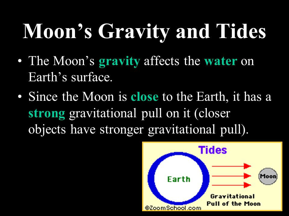 Moon's Gravity and Tides
