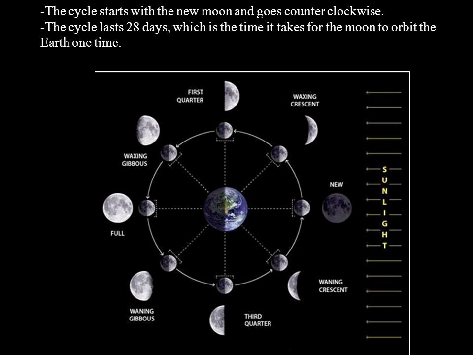-The cycle starts with the new moon and goes counter clockwise.