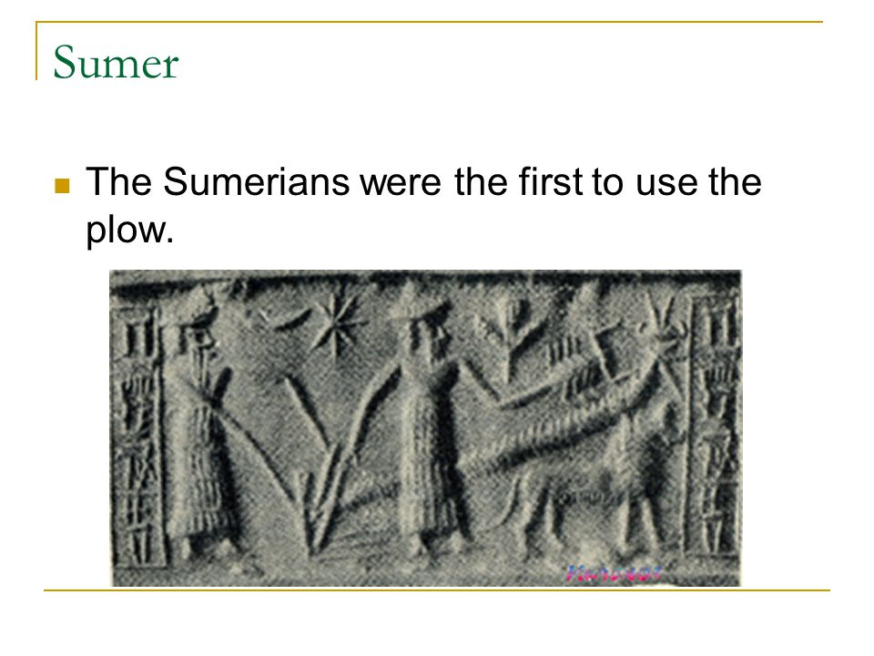 Sumer The Sumerians were the first to use the plow.