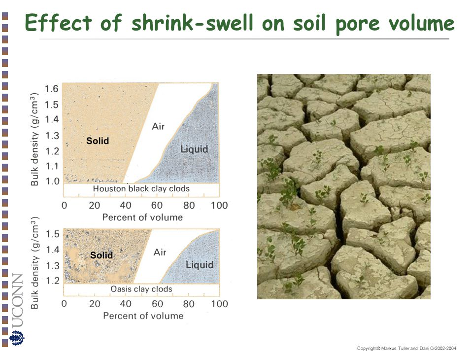 effect of clay in soil on Most plants dont grow as well in hard clay although if you have house plants, some clay can be beneficial as it holds water for a long time.