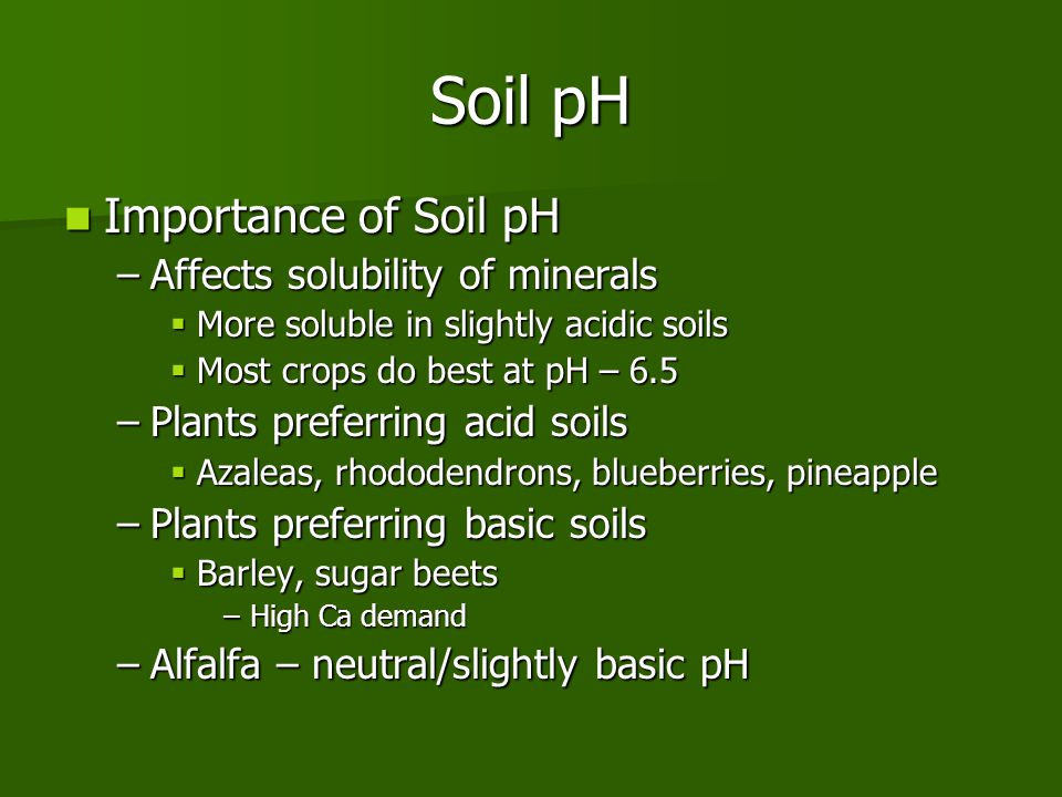 Unit 6 soil chemical properties ppt video online download for Importance of soil minerals
