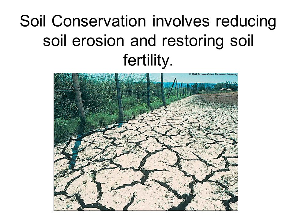 soil erosion and conservation This is the general knowledge questions & answers section on & soil erosion and conservation& with explanation for various interview, competitive examination and entrance test.