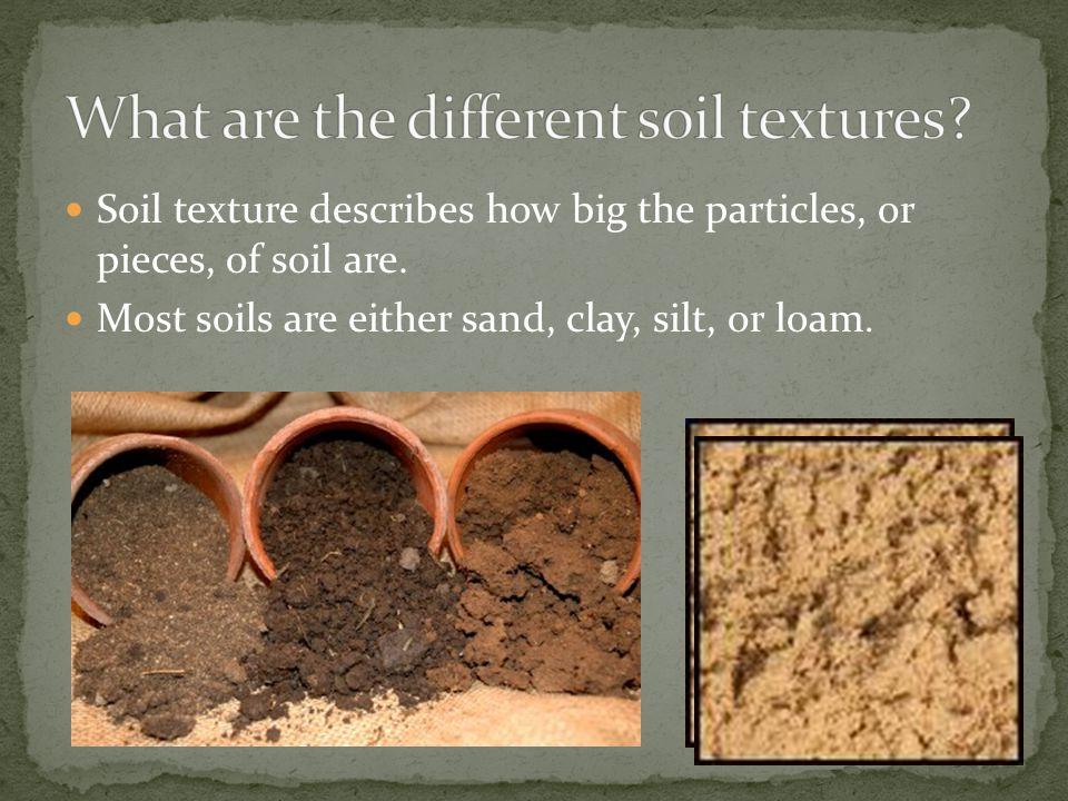 Soil It S Not Just Dirt Ppt Video Online Download