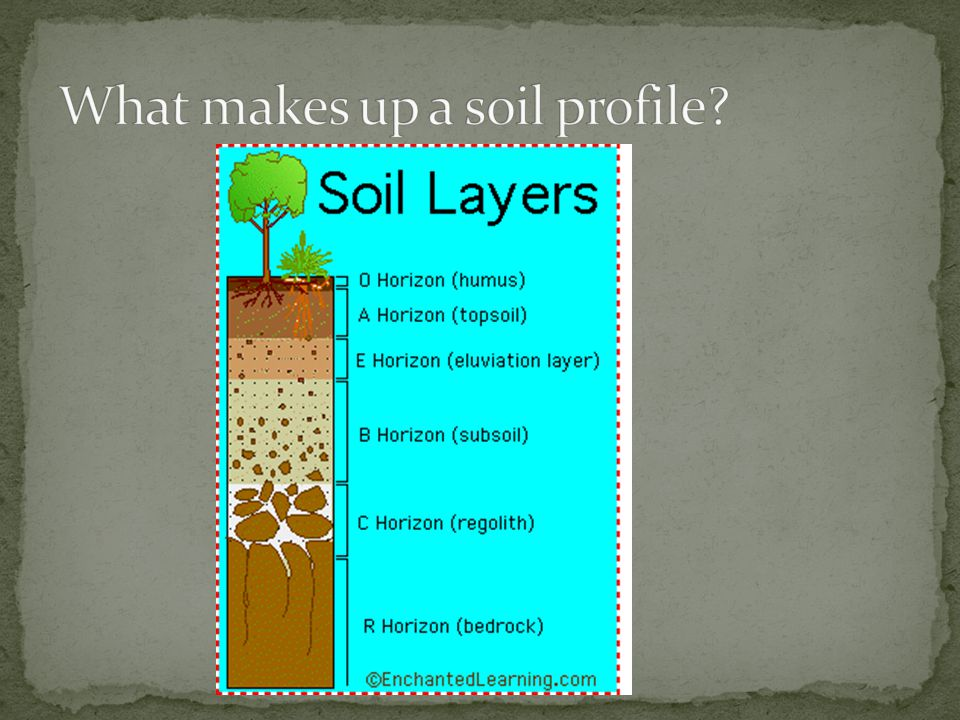 soil it s not just dirt ppt video online download
