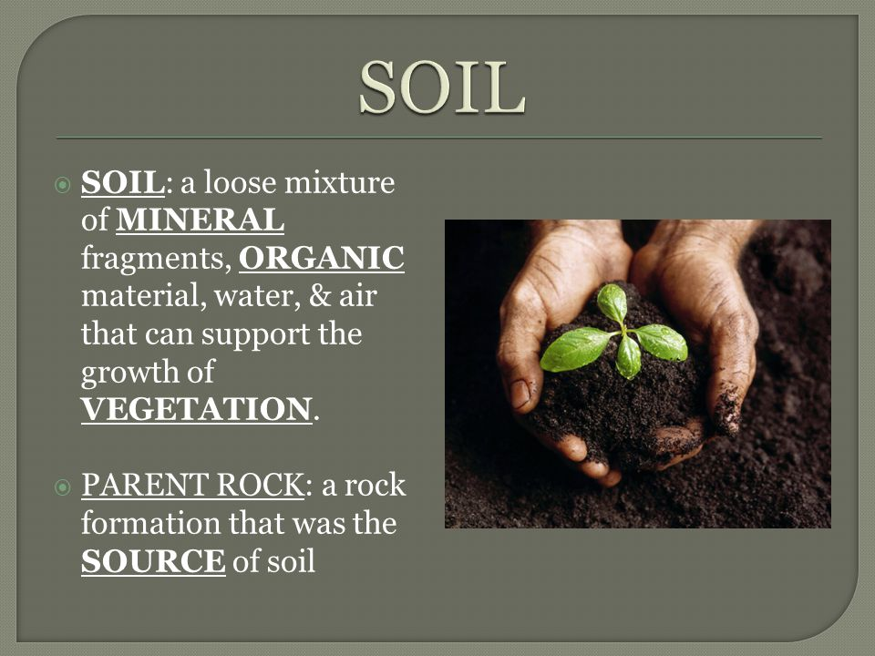 SOIL SOIL: a loose mixture of MINERAL fragments, ORGANIC material, water, & air that can support the growth of VEGETATION.