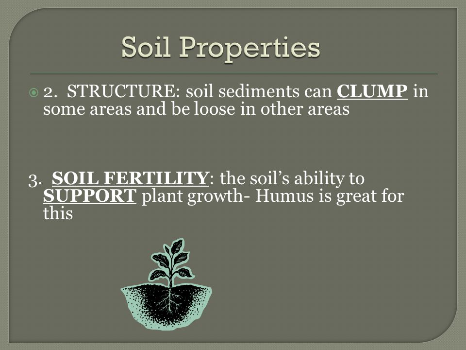 Soil Properties 2. STRUCTURE: soil sediments can CLUMP in some areas and be loose in other areas.