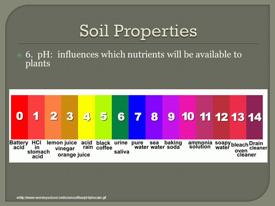 Soil Properties 6. pH: influences which nutrients will be available to plants.