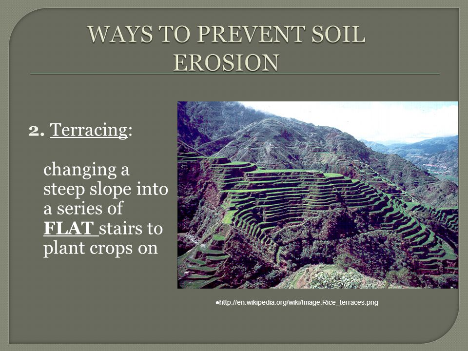 ways to prevent soil erosion Covering the bare areas in your lawn or garden with mulch or straw is an effective method for preventing erosion from wind and rain mulch and straw spread over the.