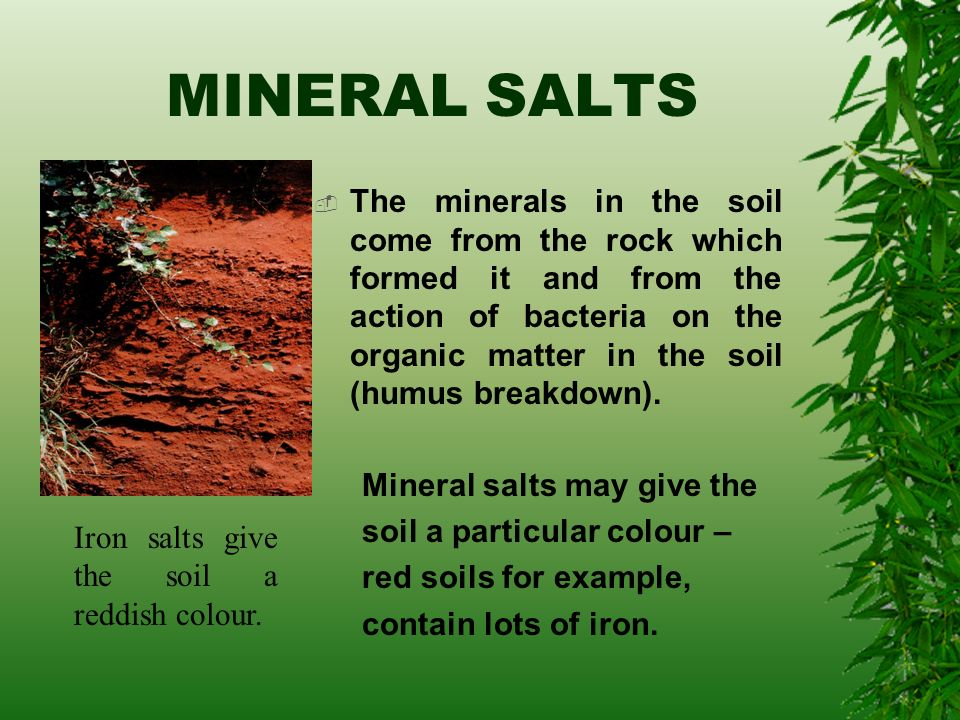 All about soil ppt video online download for What are soil minerals