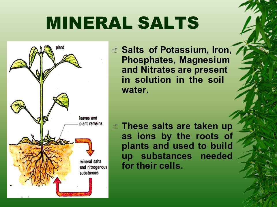 All about soil ppt video online download for Minerals present in soil