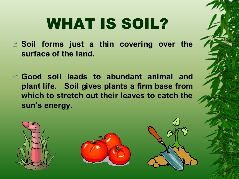 All about soil ppt video online download for Explain soil