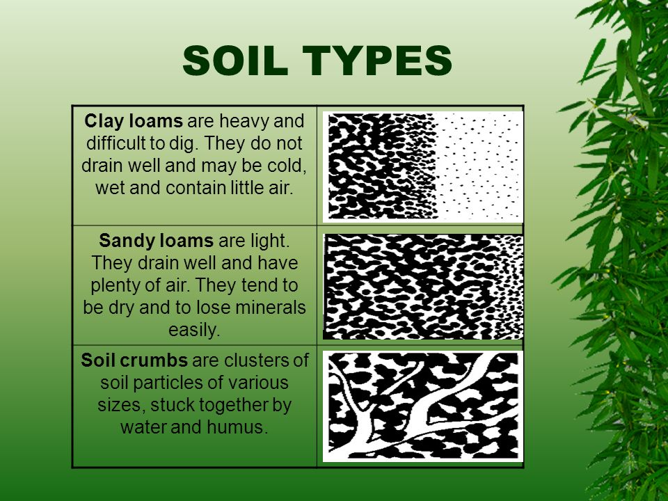 All about soil ppt video online download for Soil not draining