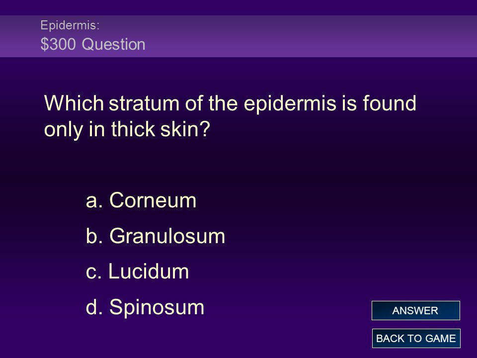 Which stratum of the epidermis is found only in thick skin