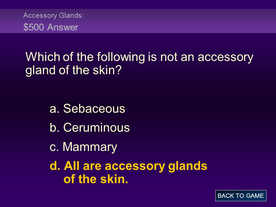 Accessory Glands: $500 Answer