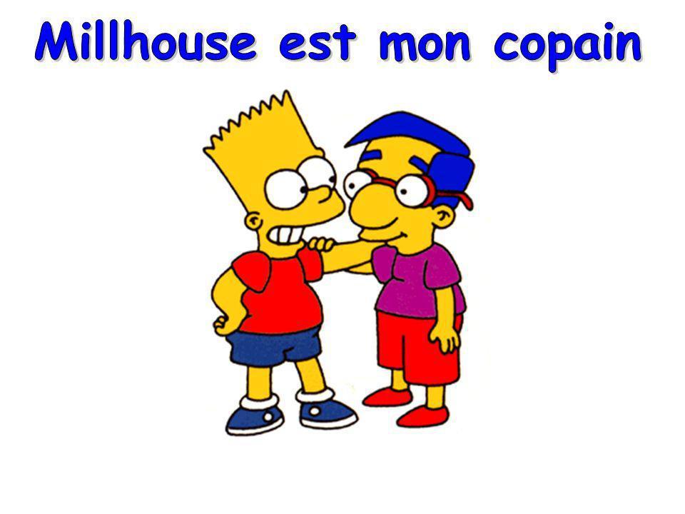 Millhouse est mon copain