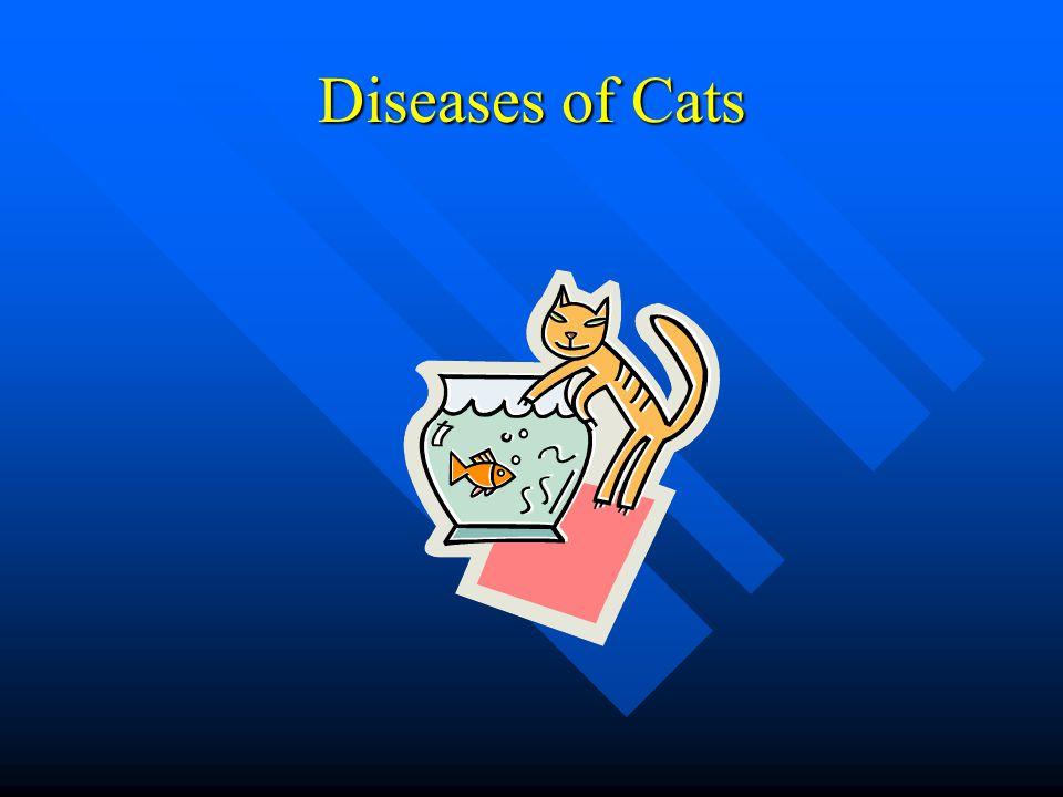 Understanding Diseases Ppt Video Online Download