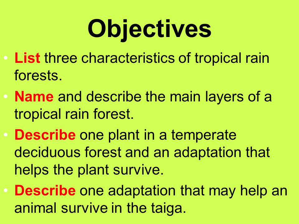 Objectives List three characteristics of tropical rain forests.