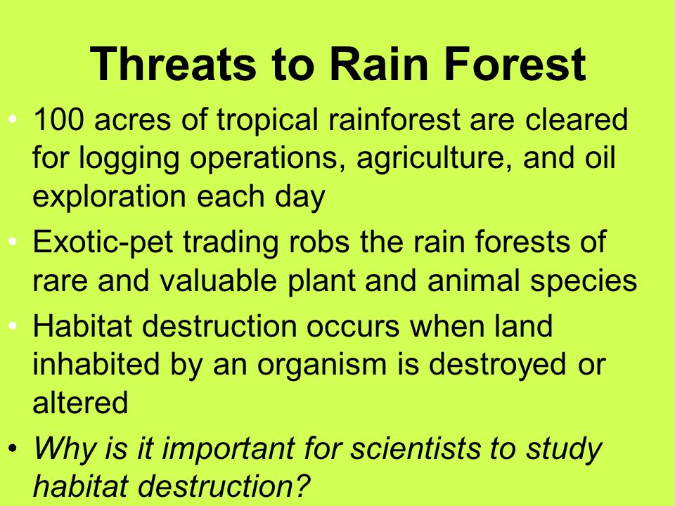 Threats to Rain Forest 100 acres of tropical rainforest are cleared for logging operations, agriculture, and oil exploration each day.