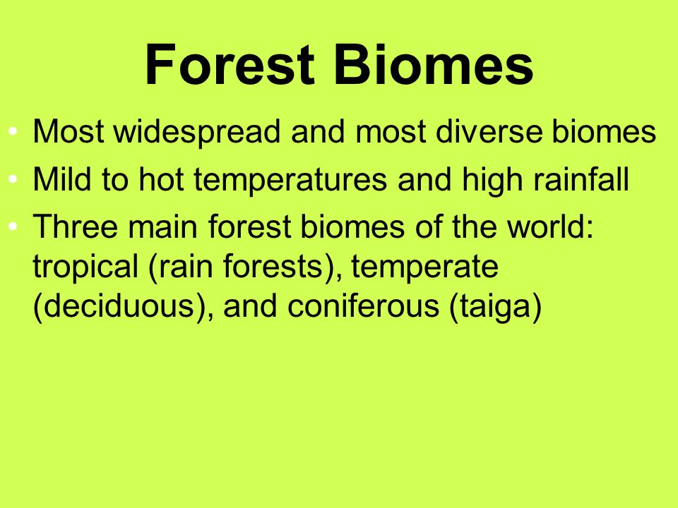 Forest Biomes Most widespread and most diverse biomes